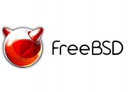 What is BSD?